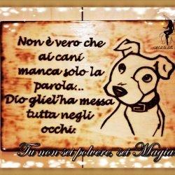 Quadro cane con dedica